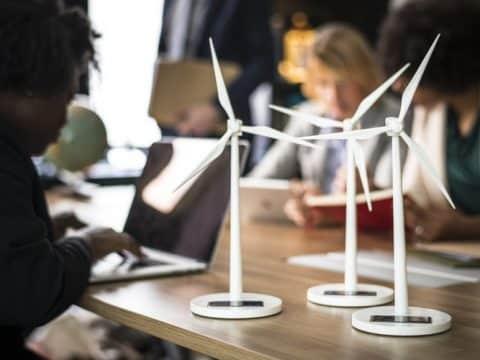 Empleo verde y sostenibilidad