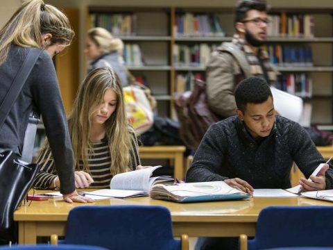 Consejos para época de estudios